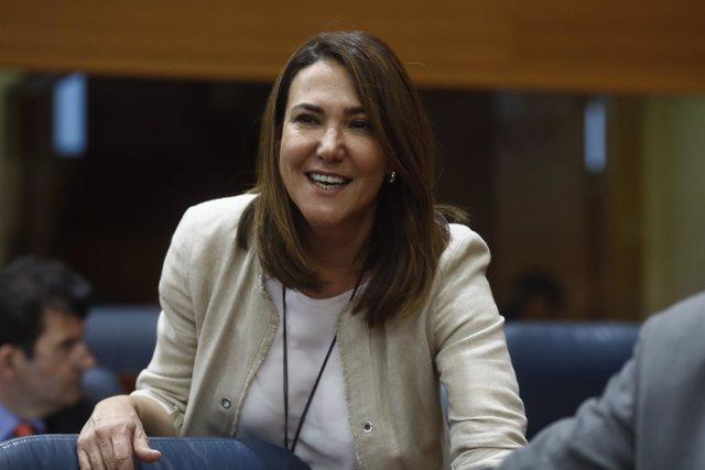 La diputada del PP en la Asamblea de Madrid, Isabel González