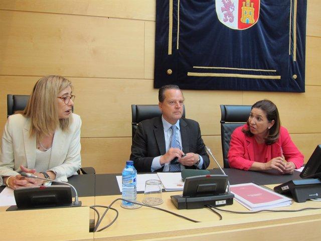 El presidente del Consultivo, Mario Amilivia, comparece en las Cortes