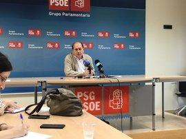 """Leiceaga cree que si el PSdeG """"tuviese una situación normalizada"""" habría """"más"""" presencia gallega"""