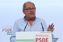 """PSOE-A quiere saber si el estado plurinacional puede suponer """"españoles de primera y de segunda"""""""