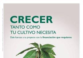 Unicaja Banco ofrece más de 430 millones en préstamos preconcedidos en su nueva campaña de cultivos intensivos