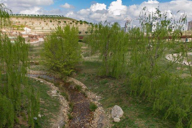 Parque Felipe VI de Madrid, naturaleza, campo, pradera, prado, árbol, árboles