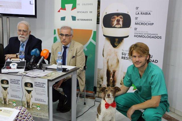 Presentación de la campaña del Consejo Andaluz de Colegios de Veterinarios