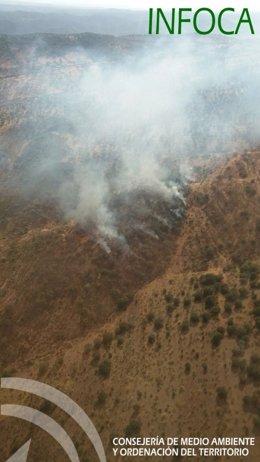 Incendio forestal en Encinasola.