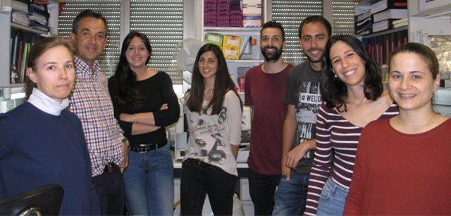 Investigadores del proyecto en Salamanca