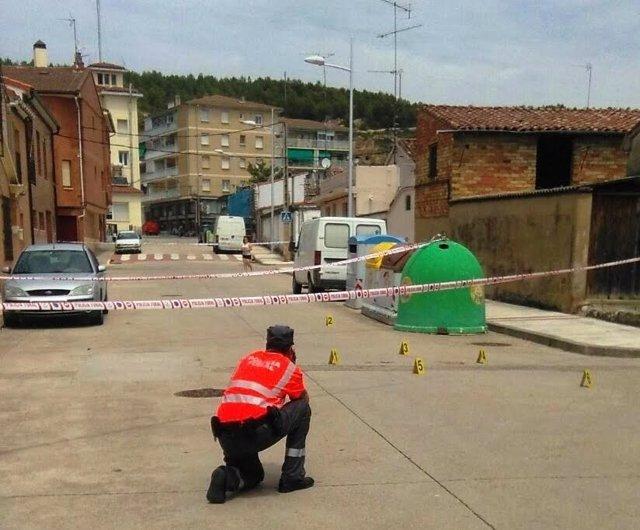 Un policía foral en el lugar donde ha sido atropellada la mujer