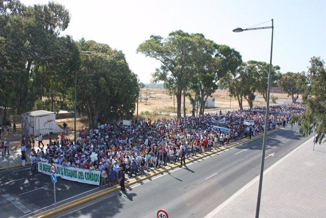 Manifestación de la Plataforma en Defensa de los Regadíos del Condado.