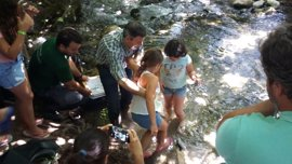 Junta libera cerca de 10.000 ejemplares de trucha para su reproducción en el Majaceite