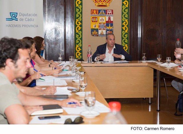 Ruiz Boix en el consejo de Participación de Diputación