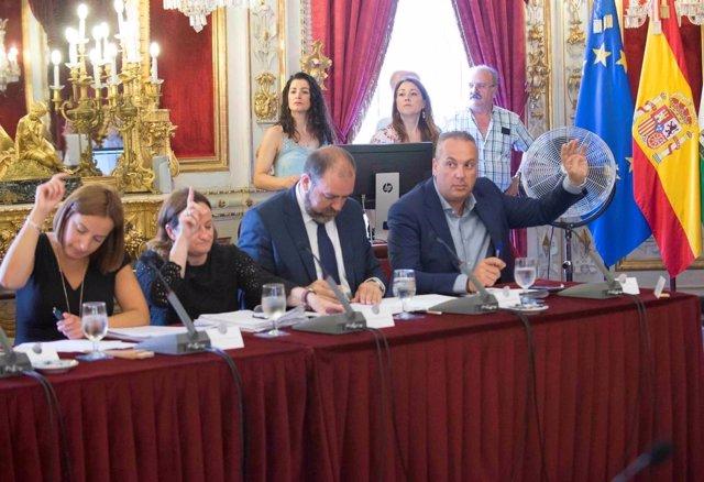 Pleno de la Diputación del mes de junio