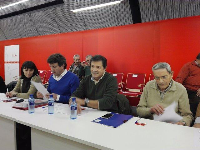 Comité Federal de la FSA-PSOE