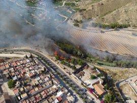 Los Bomberos estabilizan el incendio declarado en la orilla del río, en Villanueva del Segura