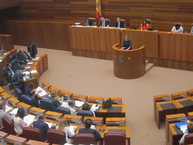Pilar del Olmo, durante el Pleno en las Cortes.