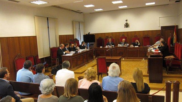 Vista de los recursos a la sentencia contra Rafael Gómez
