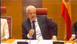 El secretario de Estado de Exteriores, Ildefonso Castro, en el Senado