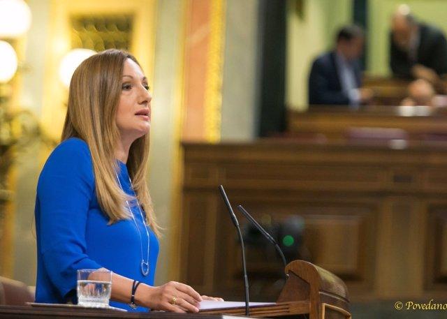 Ascensión Carreño (PP) en el Congreso