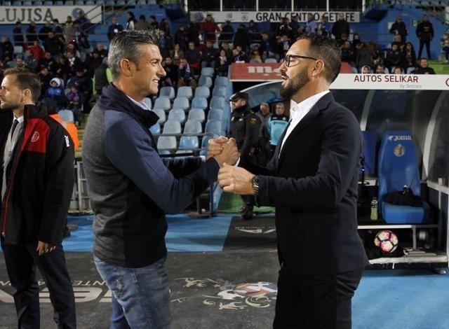 Martí y Bordalás se saludan antes del Tenerife - Getafe