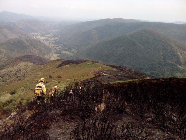 León: Incendio de Montrondo