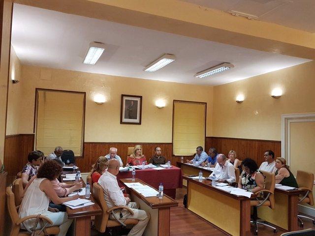 Pleno municipal del Ayuntamiento de Castilleja de la Cuesta
