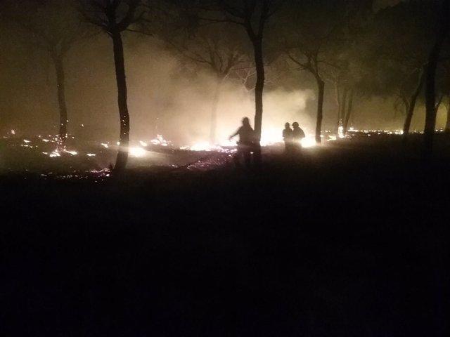Incendio forestal en Moguer