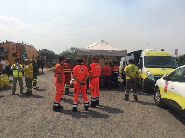 Efectivos desplazados por el incendio de Moguer (Huelva)