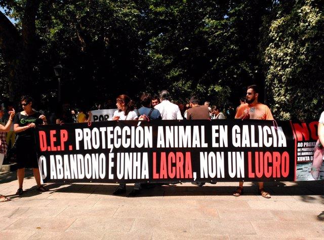 Manifestación animalista en contra del anteproyecto de Ley en Santiago