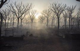 Hasta 80 bomberos forestales del Infoca combaten de noche el incendio de Moguer