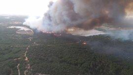 """Puig sigue """"con preocupación"""" el incendio en Moguer y ofrece apoyo y medios a la Junta de Andalucía"""