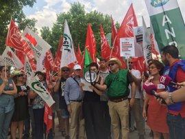 Sindicatos volverán a concentrarse este jueves por el despido de profesores interinos