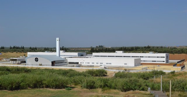 Estado de las obras del nuevo colegio CEU San Pablo Sevilla