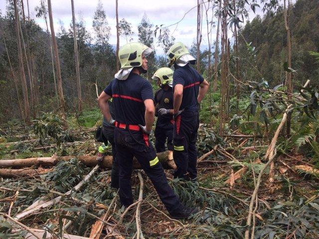 Rescate del cuerpo del trabajador forestal