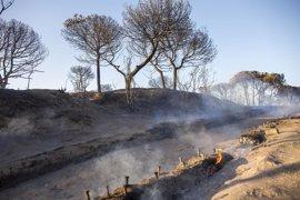Prevén dar por estabilizado el incendio de Moguer (Huelva) este martes tras un vuelo de reconocimiento