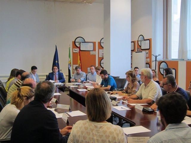 Reunión del Consejo Extremeño del Voluntariado
