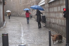 Protección Civil avisa de tormentas y vientos de hasta 80 kilómetros por hora el miércoles en seis provincias de CyL