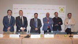 Andalucía exige al Gobierno que lleve a UE una propuesta que permita el almacenamiento colectivo de aceite de oliva