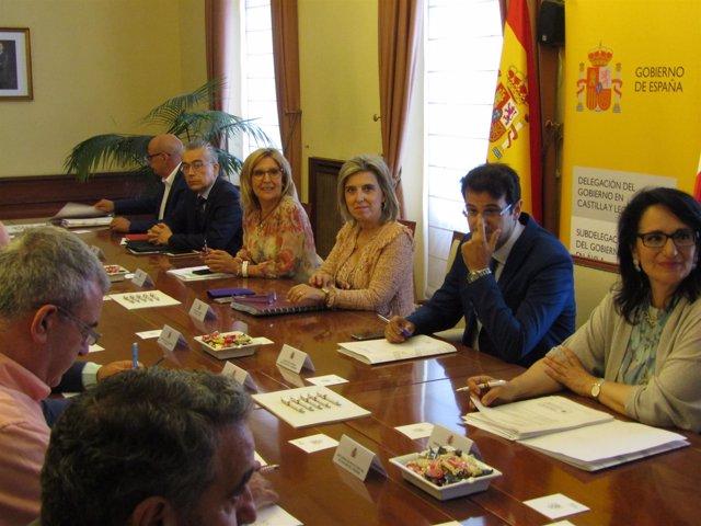 La delegada del Gobierno, en la Comisión de Asistencia