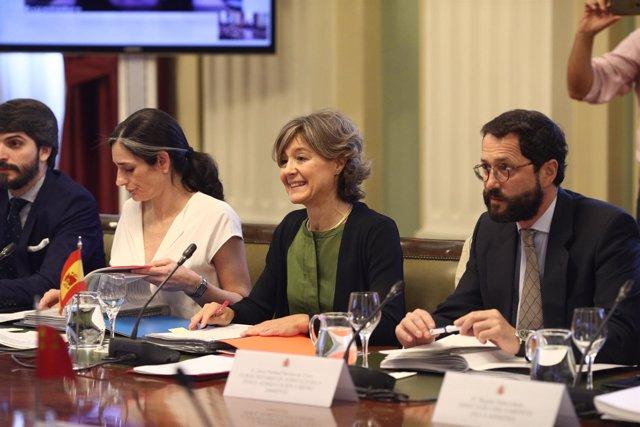 Tejerina preside el Consejo Consultivo de Política Medioambiental