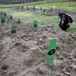 Un hombre reza en el cementerio de Potocari