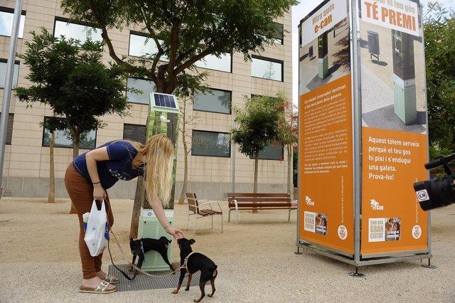El e-can premia con una chuchería a los perros que orinan en el lugar correcto