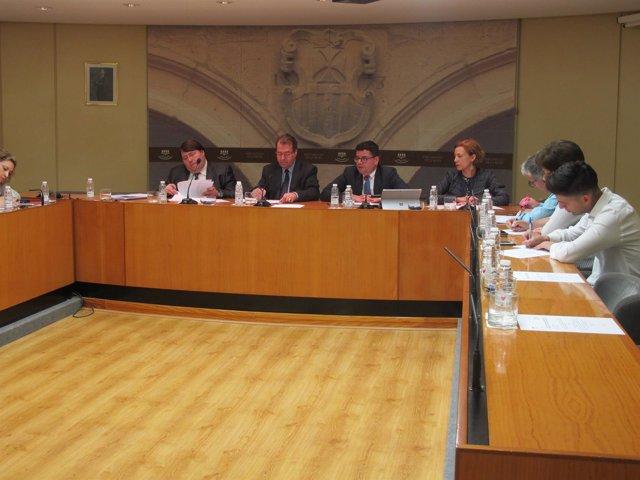 Comparecencia Domínguez en el Parlamento