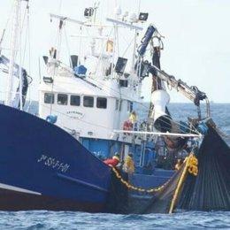 Barco pesquero