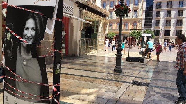 Destrozos en exposición contra el cáncer en málaga AECC vandalismo centro