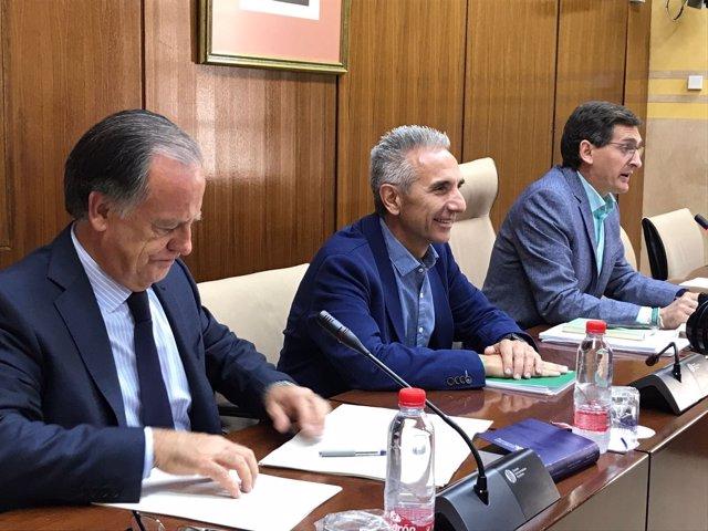 El consejero de Cultura, Miguel Ángel Vázquez, en comisión parlamentaria