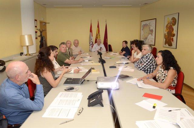 Comisión Territorial de Patrimonio Cultural de León
