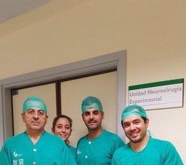 La Unidad de Cirugía Experimental del Infanta Cristina de Badajoz, acreditada para la formación en Neuroanatomía