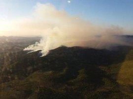 Más de 300 efectivos terrestres y 19 aéreos trabajan para extinguir el fuego de Gátova, que afecta a unas 267 hectáreas