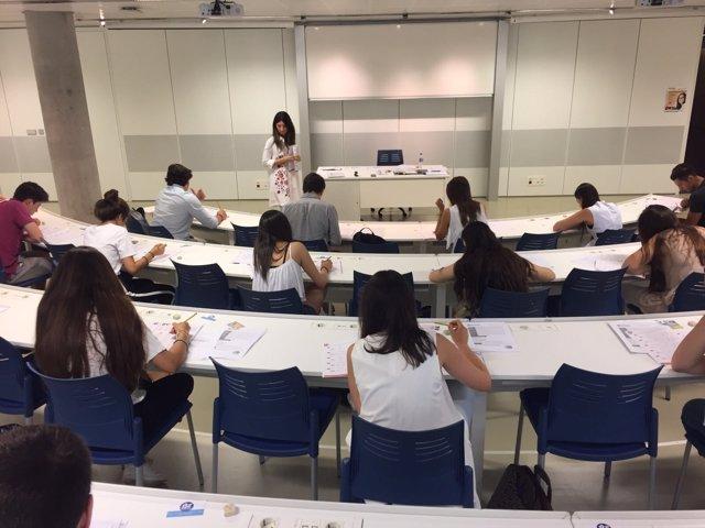 Pruebas de admisión en la Universidad Loyola Andalucía