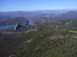La CHE lleva a cabo una campaña de vigilancia contra incendios forestales en los montes que gestiona