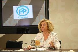 El PP pide al Ejecutivo aragonés que fomente el uso de drones y lo convierta en un sector estratégico