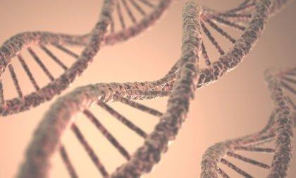 Las pruebas genéticas permiten diagnosticar casi 5.000 de las 7.000 enfermedades raras existentes